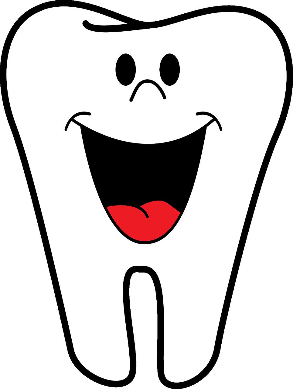 Prestazioni dello Studio Ortodontico Dott.ssa Silvia Bernini Bergamo